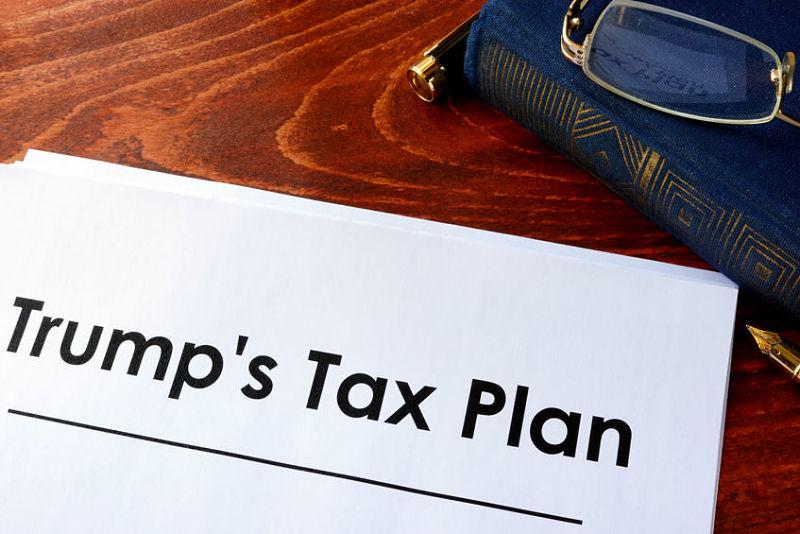 trump tax_franty