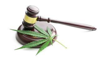 marijuana_franty